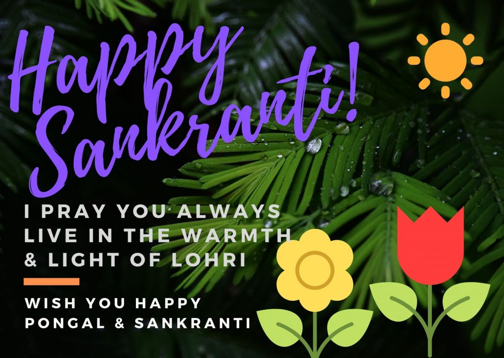 Happy Makar Sankranti & Pongal 2020 Best Wishes Image Download For Free