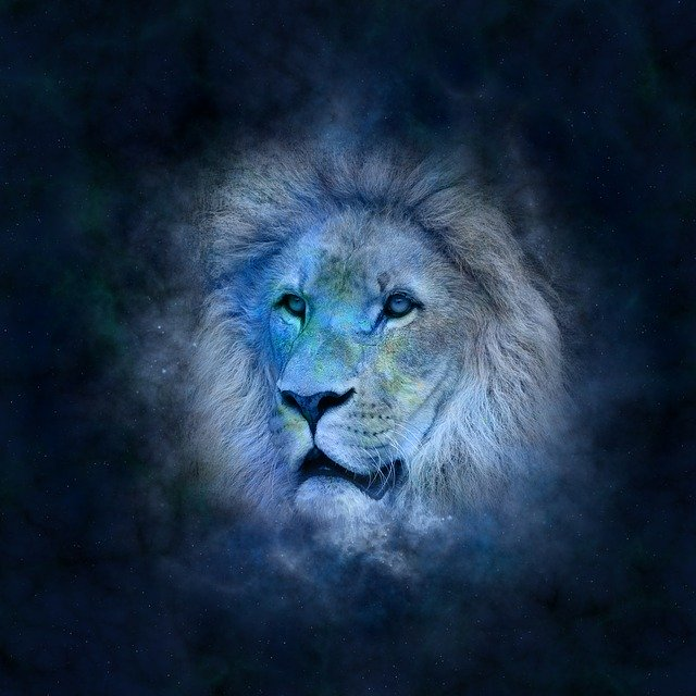 Leo Horoscope (July 23 to August 22)